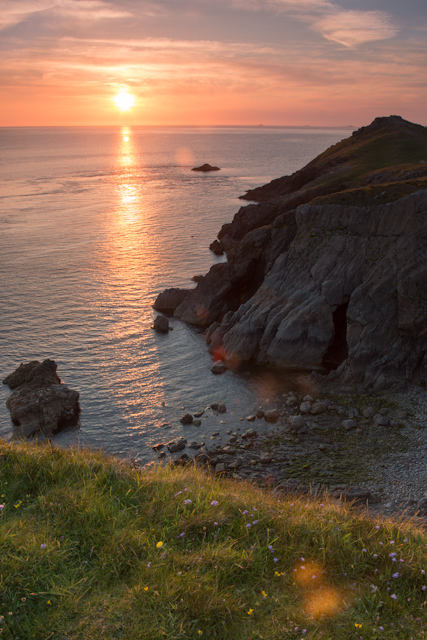 Puffins In Pembrokeshire - The Coast