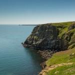 Puffins In Pembrokeshire - Skomer Island