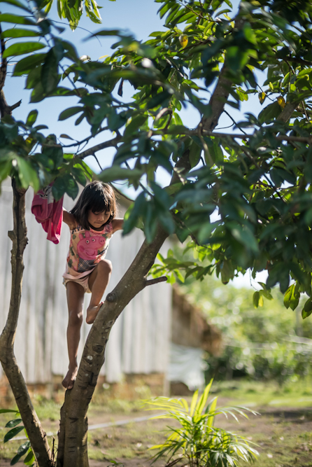 Munduruku children are excellent climbers
