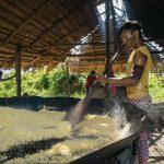 Toasting farinha